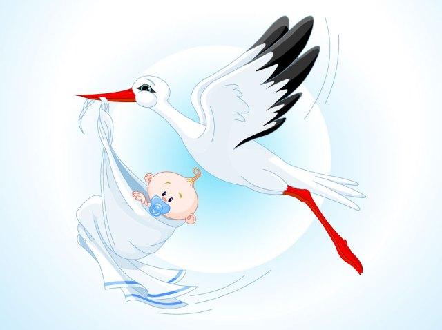 New baby image